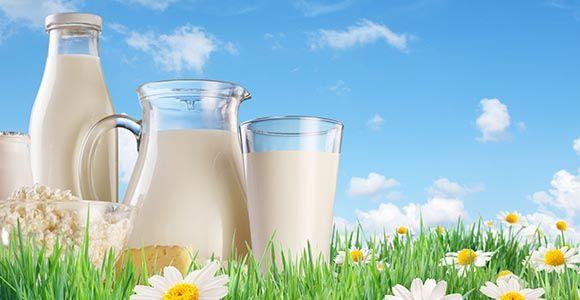 Mi�rt kell probiotikum mell� prebiotikumot is fogyasztani?